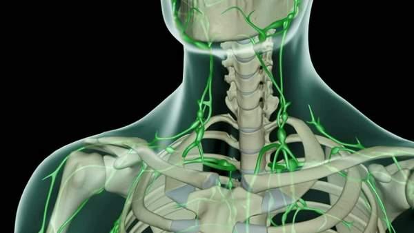 limfne zlezde na vratu