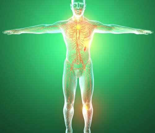 limfni sistem bolesti