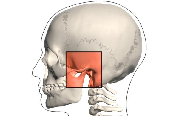 temporomandibularni zglob