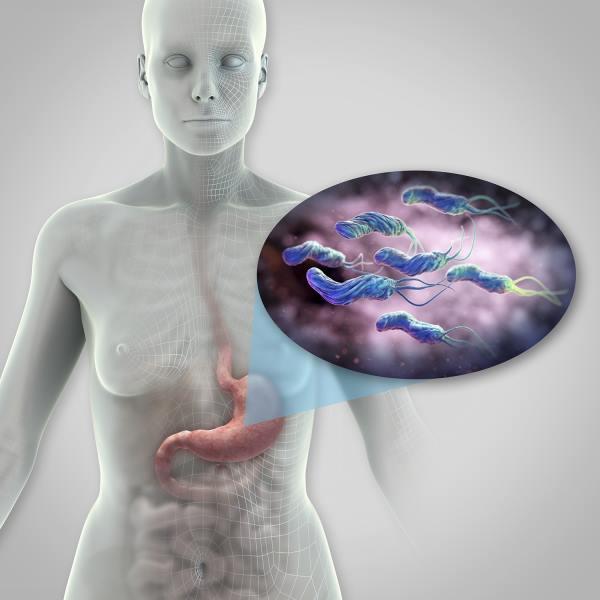 heliko bakterija lecenje