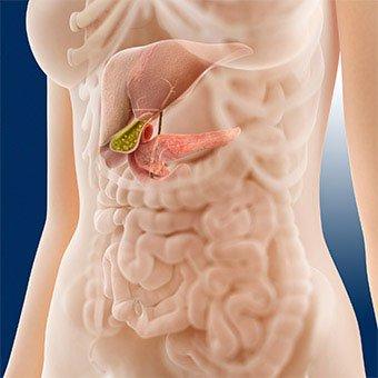 pankreas kod zena
