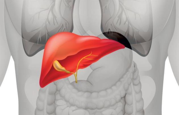 bolesti jetre simptomi