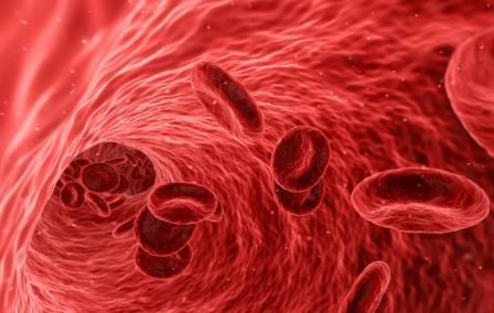 hemoglobin i hematokrit