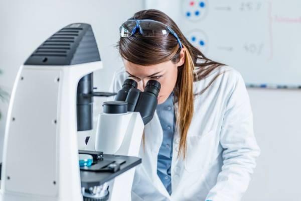 epitelne celije u mokraci