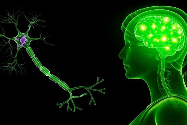 polineuropatija uzrok
