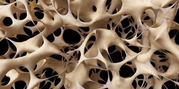 lek za osteoporozu