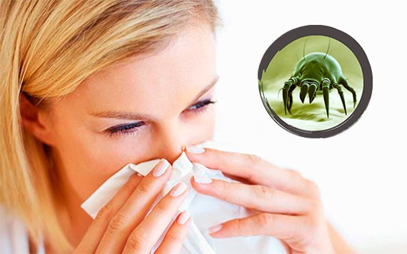 alergija na grinje simptomi